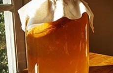 3 причины пить чайный гриб