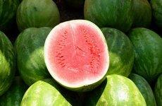 8 полезных свойств арбуза
