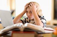 Ребенок не хочет делать уроки: что делать родителям?
