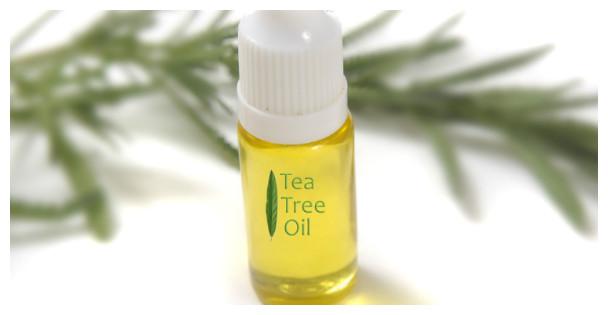 Масло чайного дерева: свойства, применение, противопоказания