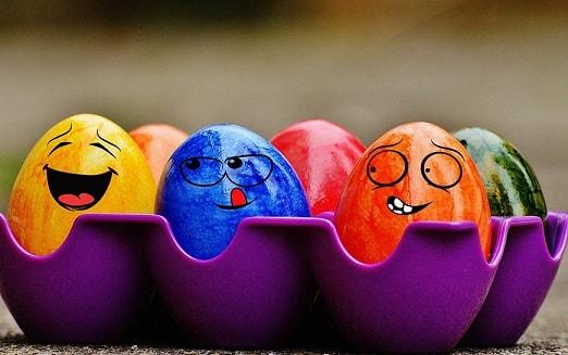 Куриные яйца: питательная ценность и польза для организма