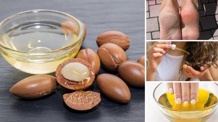 Свойства, состав и применение арганового масла